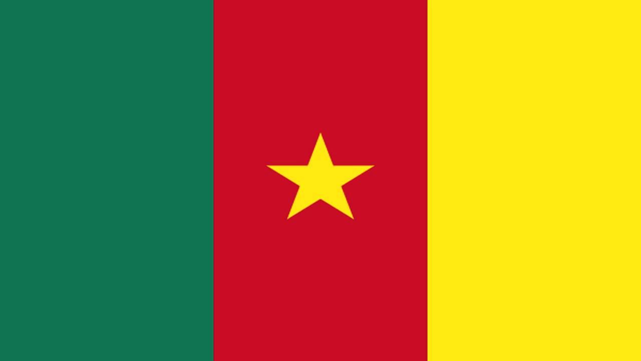 Travcour Visa & Legalisation Services Limited Cameroon Visa Application