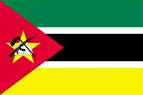 Travcour Visa & Legalisation Services Limited Mozambique Visa Application