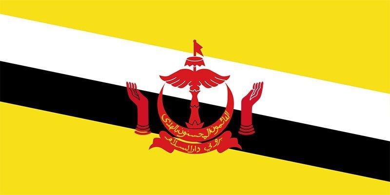 Travcour Visa & Legalisation Services Limited Brunei Visa Application