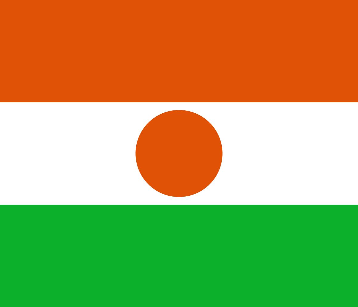 Travcour Visa & Legalisation Services Limited Niger Visa Application